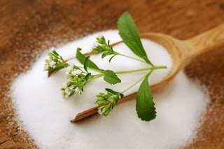 لمرضى السكر وراغبي التخسيس نبات ستيفيا (Stevia) السكرية 8