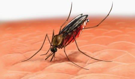 مناعة الأطفال تساعد في اكتشاف لقاح جديد للملاريا