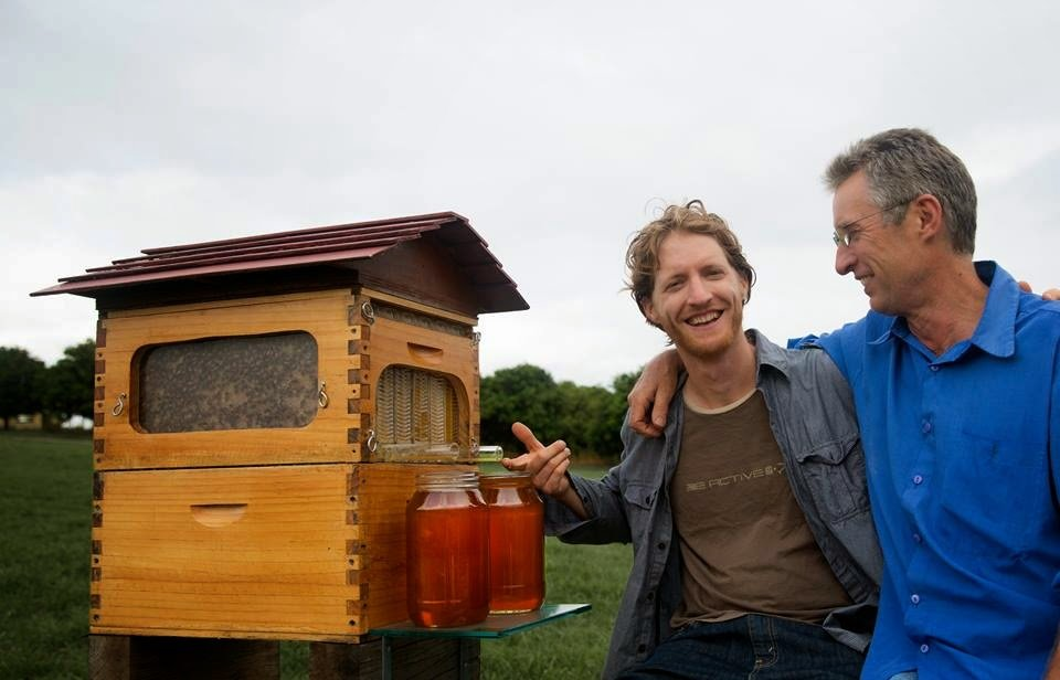hive flow honey harvesting from tap