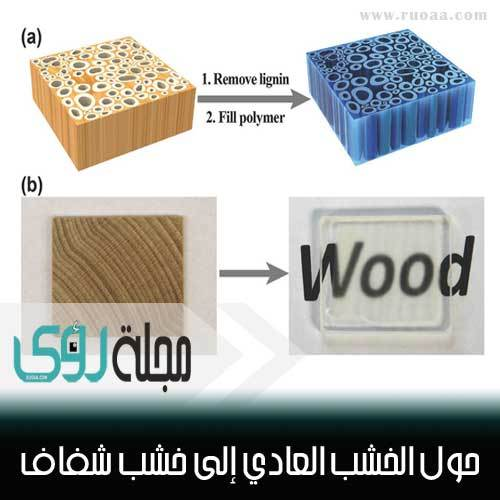 اصنع بنفسك : حول الخشب العادي إلى خشب شفاف ؟! 1